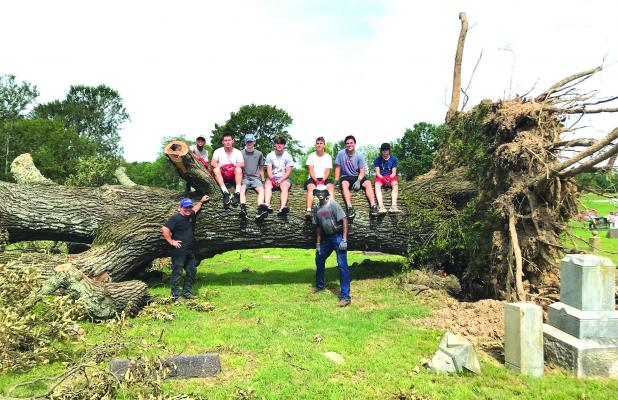 MHS Team Helps with tree cleanup